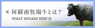 阿蘇南牧場牛とは